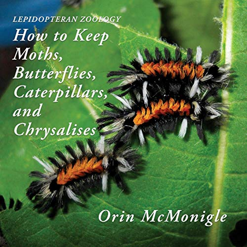 Lepidopteran Zoology: How to Keep Moths, Butterflies, Caterpillars, and Chrysalises