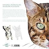 Gatti-60-disegni-geometrici-che-fanno-le-fusa-Colora-tra-i-numeri-Ediz-illustrata-1