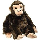 Chimpance Mediano