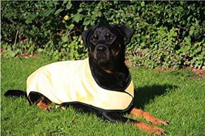 Prestige Cool Coat for Dogs, L, Yellow from PREXV
