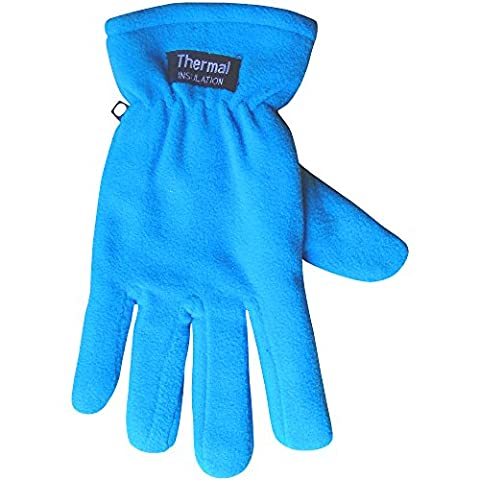 Ladies Chunky Fleece Lined Micro-Fibre Thermal Insulated Warm Winter Gloves (Blue)