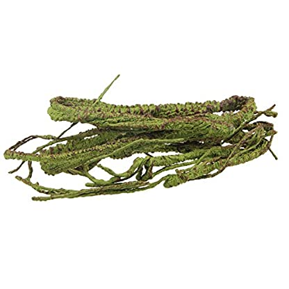 emours Flexible Bend-A-Branch Jungle Vines Pet Habitat Decor for Lizard,Frogs, Snakes and More Reptiles,Small, 3.2ft… 5