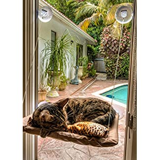 Cat Window Perch Mounted Bed Kitten Window Sunny Seat Basking Bed Pets Hammock Beds Washable Cover with Strength Suction Cups Size 22″x12″ hibote 51 86otL7bL
