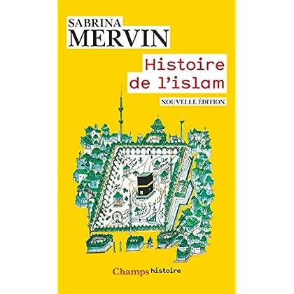 Histoire de l'islam: Fondements et doctrines (Champs Histoire)