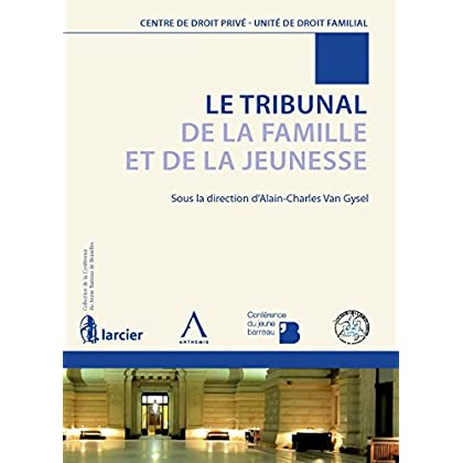 Le Tribunal de la Famille et de la Jeunesse: Un point sur la réforme du droit familial belge