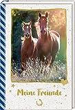 Freundebuch – Pferdefreunde – Meine Freunde: Galoppierende Pferde