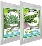 BIO Sauge & Ciboulette - Graines de plantes aromatiques/Intérieur & Extérieur