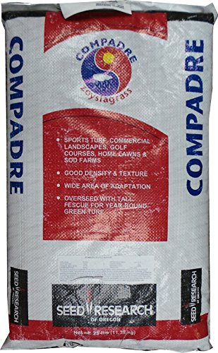 Compadre Zoysia Grass Seed - 1 Lb by Farmerly -