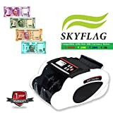 SkyFlag Currency Note Counting Machine - Fake Note Detection UV MG IR