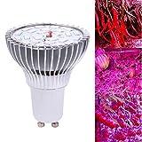 Demiawaking Vollspektrum GU10 24Led (16 Rot + 8 Blau) Wachsen Licht AC85-265V LED Pflanzen Lampe für Garten, Aquarium, Gemüse Hydrokultur 60mm * 60mm * 70mm