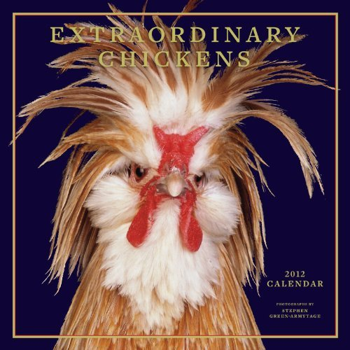 Extraordinary Chickens 2012 Wall Calendar by Stephen Green-Armytage (2011-08-01)