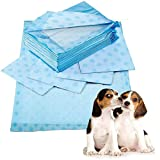 Prime Paws X-Large 60x90cm Scented Puppy Trainer...
