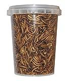 500 ml Mehlwürmer gefriergetrocknete / getrocknet | Reptilienfutter, Schildkrötenfutter, Futtertiere Igelfutter Vogelfutter