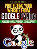 Protecting Your Website From Google Panda - Includes Google Friendly SEO Blue Print (English Edition)