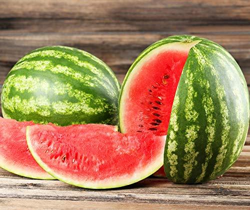 Bobby-Seeds Melonensamen Crimstar F1 Wassermelone Portion