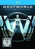 Westworld Staffel 1: Das Labyrinth [Blu-ray]