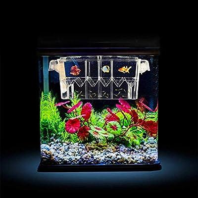 Aquarium Fischzuchtbox Acryl schwimmende Fische Isolierung Multifunktionale Brutkasten Brutkasten Box Transparent Fisch Braten Tank Brutwaren