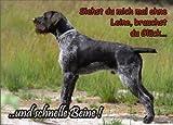 INDIGOS UG - Türschild FunSchild - SE424 DIN A5 laminiert ACHTUNG Hund Deutsch Drahthaar - für Käfig, Zwinger, Haustier, Tür, Tier, Aquarium