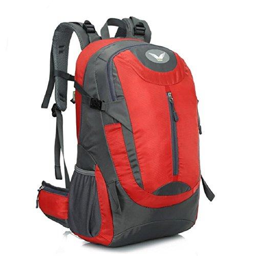 LJ&L Zaino da arrampicata all'aperto, uomini e donne pratica escursionismo pratico borsa a tracolla resistente all'usura, grande capacità di 41 litri, zaino di alta qualità,D,41L B