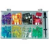 Wentronic KFZ-Sicherungen Set (10 Stück)