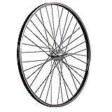 Taylor Wheels 28 pollici ruota posteriore bici mozzo freno contropedale nero