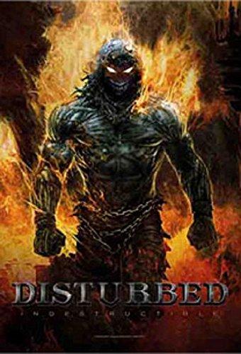 Disturbed indestrubtible-Bandiera Poster Bandiera