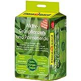 Floragard Aktiv-Grünpflanzen- und Palmenerde 20 L, mit 3-Monate-Langzeitdünger f. Palmen, Farne, Ficus u. andere Zimmerpflanzen