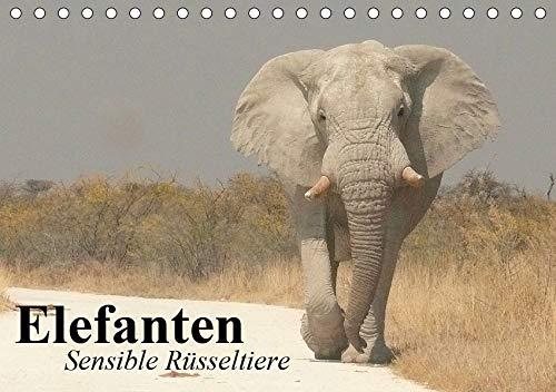 Elefanten. Sensible Rüsseltiere (Tischkalender 2020 DIN A5 quer): Die starken und sensiblen...