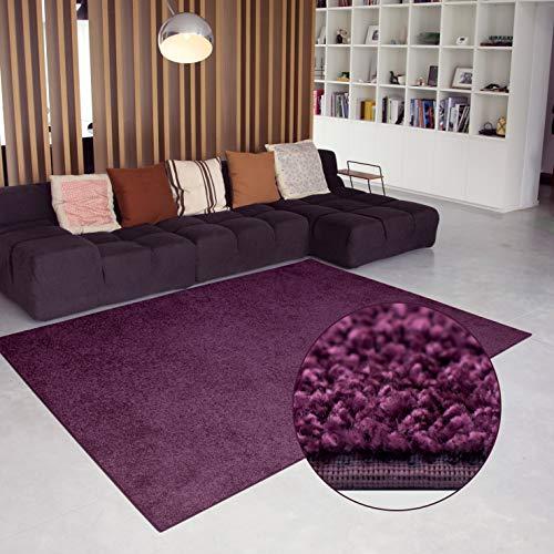 Carpet Studio Alfombra Suave al Tacto 115x170cm, Salón/Cocina/Dormitorio/Pasillo, Decoracion Habitacion...
