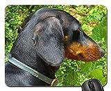 Mauspads - Dackel-Hundeschwarzbraunpelz-Tier