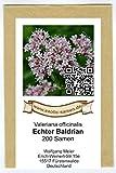 Echter Baldrian - Valeriana officinalis - Bienenweide - Zier- + Arzneipflanze - 200 Samen
