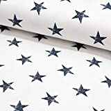 Brittschens Stoffe und Zutaten Stoff Sommersweat French Terry | Offwhite mit Sternen in Marine | Stoff zum nähen Meterware Kinderstoff