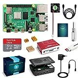 LABISTS Raspberry Pi 4 Model B 1GB RAM Starter Kit, RPi Barebone con MicroSD Card 32GB, Tipo C Alimentatore 5.1V 3A, Ventola, Micro HDMI, Lettore di Scheda e Custodia Protettiva Nera
