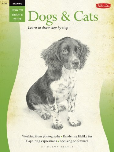 Drawing: Dogs & Cats: Learn to draw step by step (How to Draw & Paint) by Stacey, Nolon (2009) Paperback