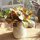 Künstliche Pflanze AST DIY Pflanze Wand-Ausgang Hochzeit Garten Dekoration Bonsai Grüne Blätter künstliche gefälschte Blumen (Color : Light orange Plant)