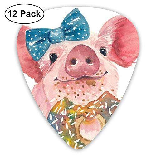 Novelty Rainbow Painting Bright Color Doughnut Oil Painting Pig Guitar Picks - 12 pack -