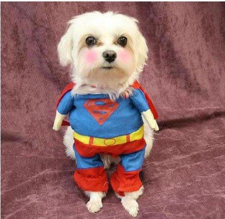 Superman Disfraz de perro gato cachorro Halloween Ropa Mascota Ropa Superperro Vestido Up