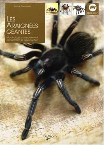 Les araignées géantes