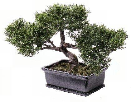 Bonsai Ceder, ca. 113 Blätter, mit Schale, 23cm, künstlicher Bonsai Baum