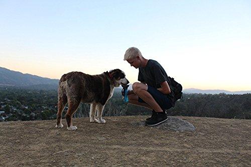 MARCHY Auto Dog Mug Travel Portable Dog Water Bottle Aqua Dog Mug – The smart way to keep your dog hydrated on the go