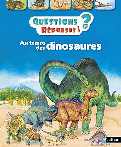 Au temps des dinosaures - questions ? reponses ! n2 - 7+ ans - vol02 (Questions Réponses 6/8 ans) por Rod Theodorou