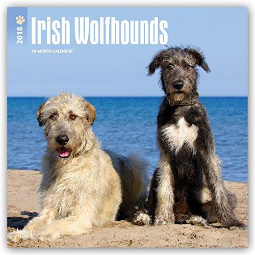 Descargar Libro Irish Wolfhounds - Irische Wolfshunde 2018 - 18-Monatskalender: Original BrownTrout-Kalender - mit freier DogDays-Appmit freier DogDays-App de Browntrout Publishers