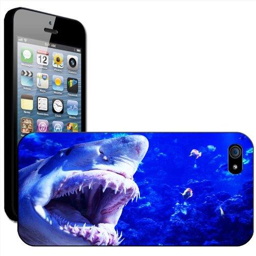 Requin Coque arrière rigide détachable pour Apple iPhone modèles, plastique, noir, iPhone 6