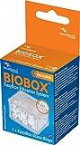 Aquatlantis Easy Box Cristal Anillos, XS