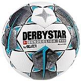 Derbystar Bundesliga Brillant Mini Voetbal