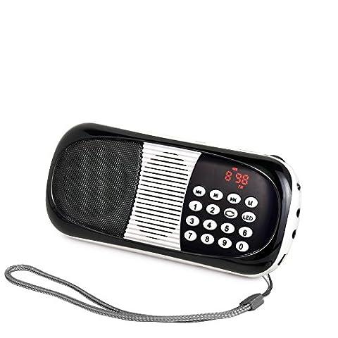 eJiasu Audio Radio Mini Musique MP3 Lecteur numérique FM avec USB SD Port TF Micro (108 Chiave Usb)