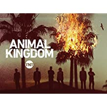 Animal Kingdom - Season 1 [OV]