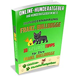 Französische Bulldogge: 10 gesunde Tipps für Ihre Franz. Bulldogge