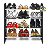 #2: PRO365 Economical 12 Pair Shoe Rack / 4 Layers