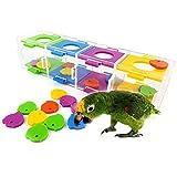 ASOCEA pappagallo ara giocattoli intelligenza formazione con colore...
